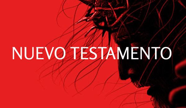 Estudios bíblicos del Nuevo testamento por el pastor Alejandro Alonso